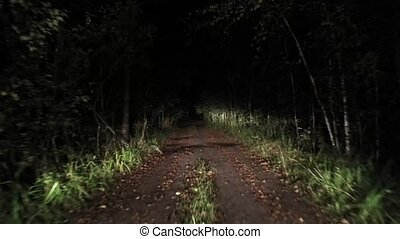 Night forest road Riding at night. 13 - Night forest road ...