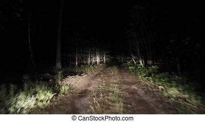 Night forest road Riding at night. 14 - Night forest road...