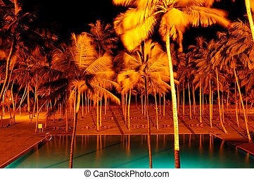 Night illumination of swimming pool and palms at luxury hotel, Bentota, Sri Lanka