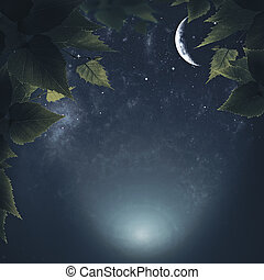 Night in the forest, abstract natural backgrounds