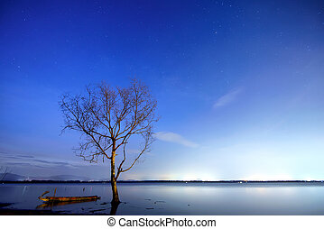 Night lake - bright water and trees