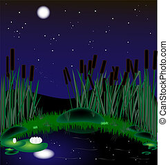moonlit night, a lake with reeds and water lilies
