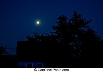 Night landscape with a full moon.