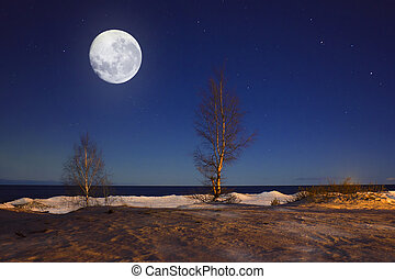 Night landscape with a Supermoon. A huge moon. Full moon