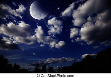 Night landscape with the moon