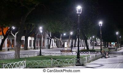 Night lantern city park - Night walk in the city park
