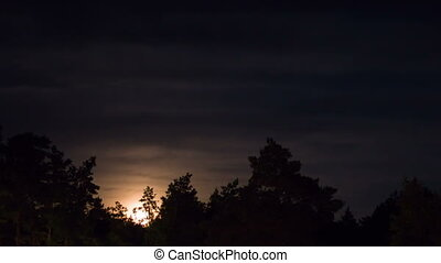 Night Moon Rising on the Horizon over the Trees and Clouds....