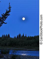 Night, moon, river and trees. Polar Ural, Komi Republic, ...