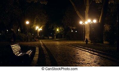 Night park lamps city