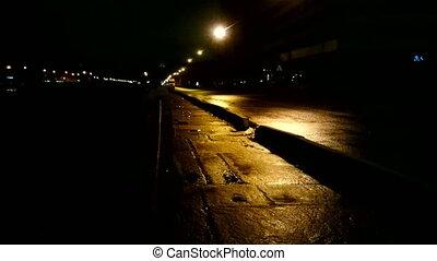 Night, rain, wind and swinging streetlight along the street