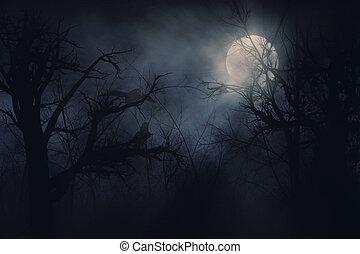 Night ravens - Illustration of night ravens on a trees...