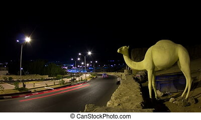 Night road with camel