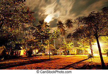 Night scene - night scene