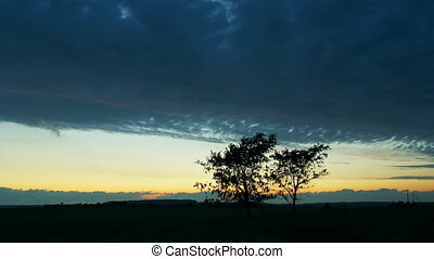 Night scene time-lapse background - Two trees and dark...
