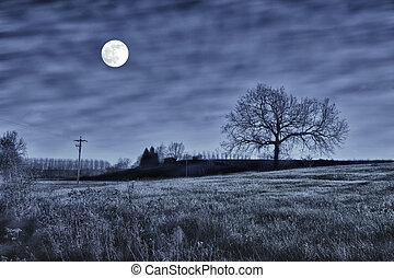 Night scene with a tree and full moon