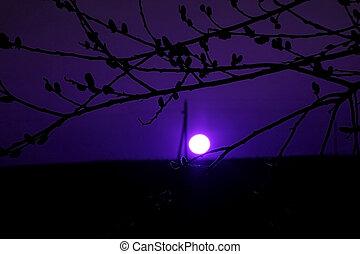 Night scene with moonlight