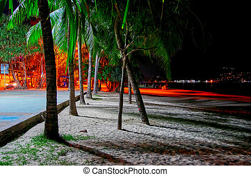 Night seaside promenade. Lit by street lights palm trees on the beach.
