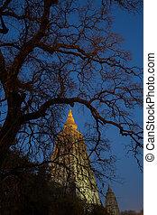 Night Shot. Mahabodhi temple, bodh gaya, India. The site ...