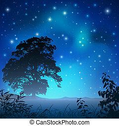 Night Sky - A Night Sky with Big Tree and Stars
