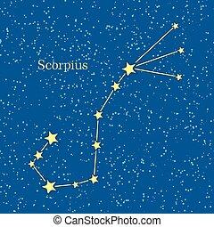 Night Sky with Scorpius Constellation Illustration