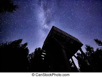 Night sky with the Milky Way over the forest and a bird-watching tower. Trees surrounding the scene