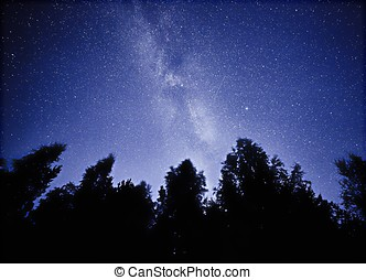 Night sky with the Milky Way over the forest and trees. The last light of the setting Sun on the bottom of the image