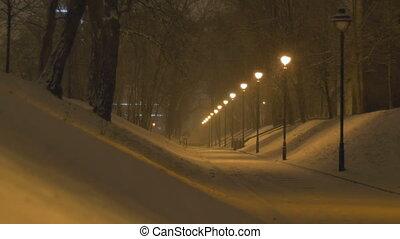 Night Snowing Alley