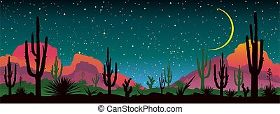 Night starry sky over the mexican desert - Landscape with ...