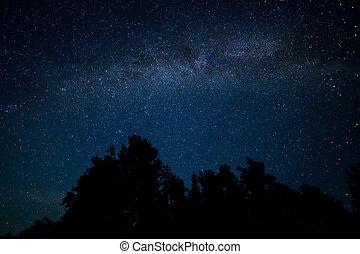 Night starry sky scene