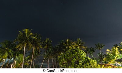 Night storm over palms beach time lapse
