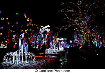 Night street in the city is decorated with a luminous multicolored garland on trees with lighting. Decoration of the city in Ukraine to Hanukkah and the New Year