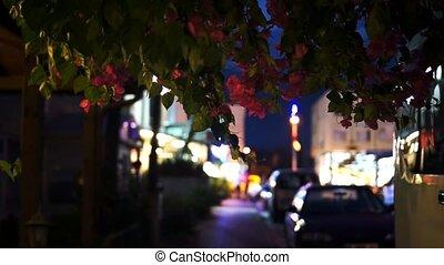 Night street in the Kemer. Turkey.
