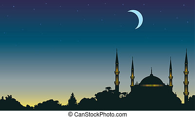 night, the moon and a mosque