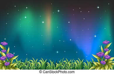 Night view - Illustration of a night view of aurora