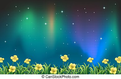 Night view - Illustration of a night view of a flower field