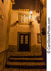 Night view of a narrow cobbled street in Obidos village, Portug