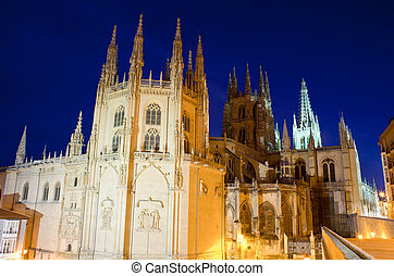 Night view of Burgos cathedral , Spain