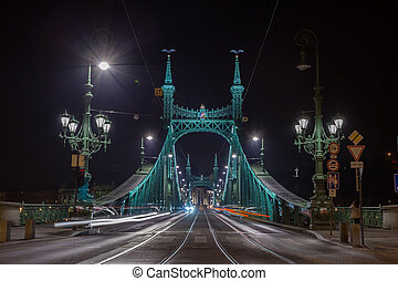 Night view of Liberty Bridge, capital of Hungary. Travel.