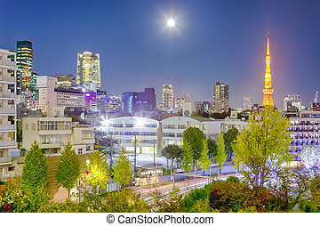 Night View of Picturesque Tokyo Skyline at Blue Hour in Japan with Tokyo Tower in Frame.