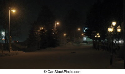 Night view of snowy avenue with fir trees and lanterns -...