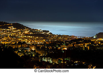 Night view to Nice with moonlight on the water