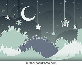 Night Winter City