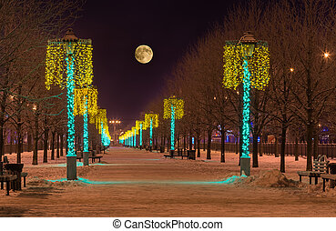 Night winter landscape in the alley of city park