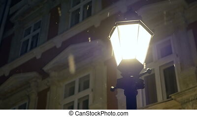 Night winter street lamp
