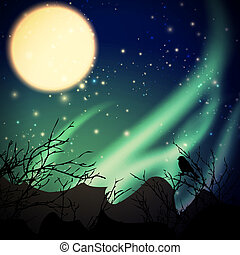 night with northern lights and moon