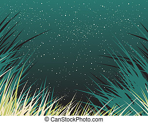 Nightgrass