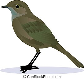 nightingale cartoon vector illustration