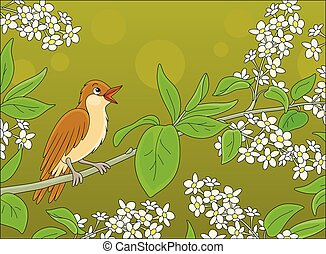 Twittering small thrush with brownish plumage perched on a spring blooming tree, vector cartoon illustration