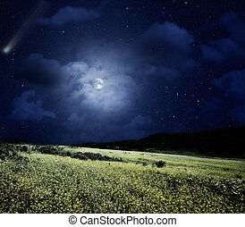 Nightly meadow. Natural summer backgrounds with comet and full moon