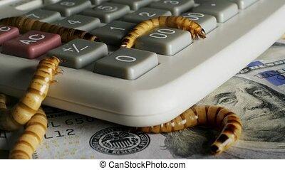 nightmare., calculator., haut, bureau, fin, espèces,...